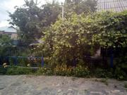 Дом,  хоз.постройки,  сад (домовладение) в с.Мизяковские Хутора,  Вин р-н - foto 3